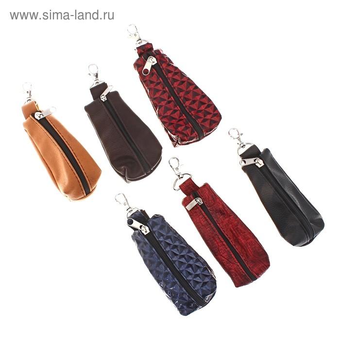 Ключница на молнии, металлическое кольцо, карабин, цвет МИКС