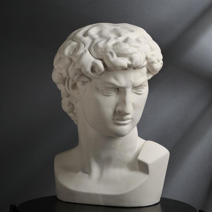 "Гипсовая фигура ""Голова Давида"" 30х30х45 см, белая - фото 774211"