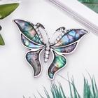 """Брошь """"Галиотис"""" бабочка летящая, цвет зелёный"""