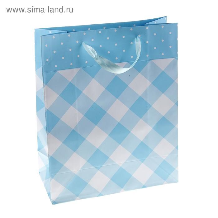 """Пакет ламинированный """"Клетка"""", цвет голубой"""