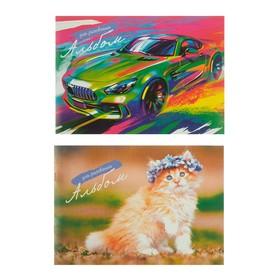 Альбом для рисования А4, 16 листов на скрепке, обложка мелованный картон, блок 80 г/м2, МИКС