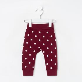 Штанишки для девочки, цвет бордовый/горох, рост 62 см (40)