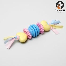Игрушка жевательная для собак Пижон Premium на верёвке, 5 элементов, термопластичная резина, микс
