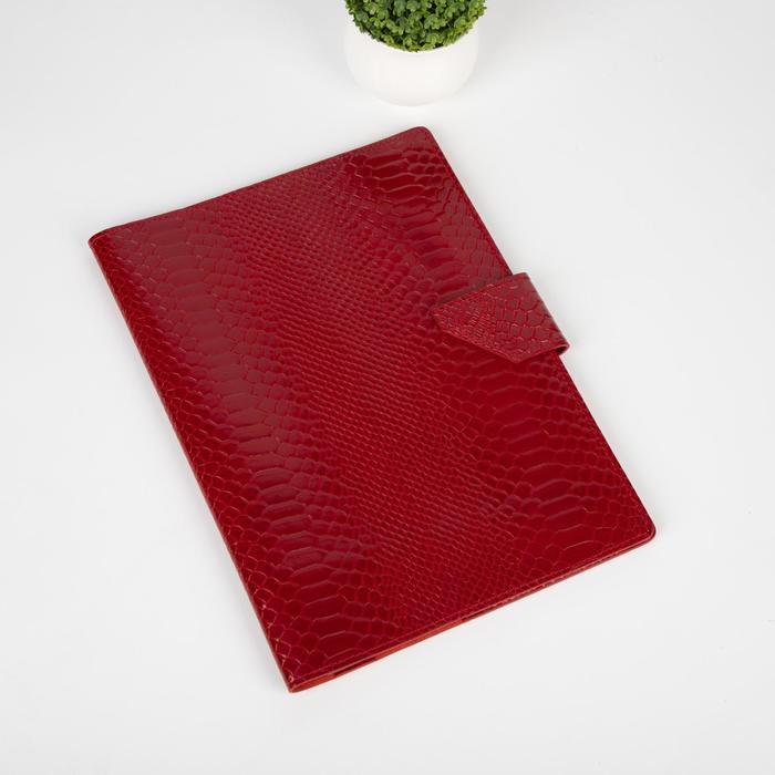 Папка для семейных документов на клапане, 2 комплекта, цвет красный - фото 775319