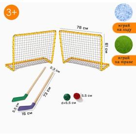 Hockey set: 2 sticks, 2 gates with a net, puck, ball, in a box