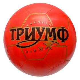 Мяч «Триумф», диаметр 200 мм, МИКС