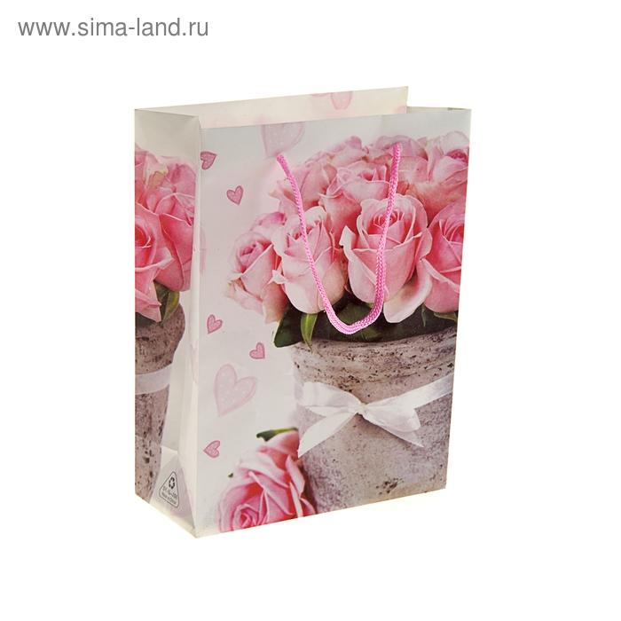 """Пакет пластиковый """"Розы в горшочке"""""""