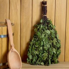 Broom for a bath birch