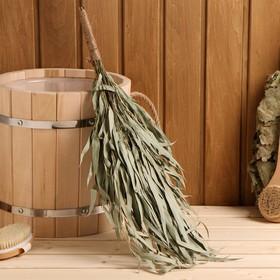 Broom for a bath eucalyptus