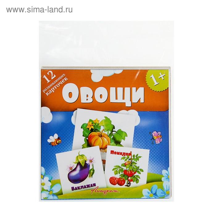 Развивающие карточки для малышей «Овощи» (12 штук)