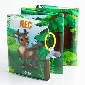 Развивающая книжка-гармошка для игры в ванной на присосках «Лес»