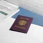 """Обложка для паспорта """"Герб"""", фиолетовый флотер"""