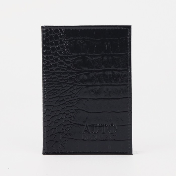 Обложка на автодокументы, файл под страховку 22х15.5 см, цвет чёрный