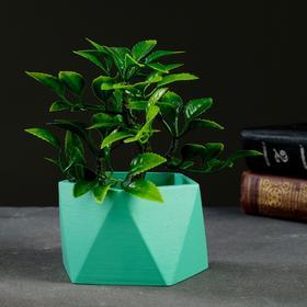Кашпо Пятиугольник 9 х 6 см зелёный