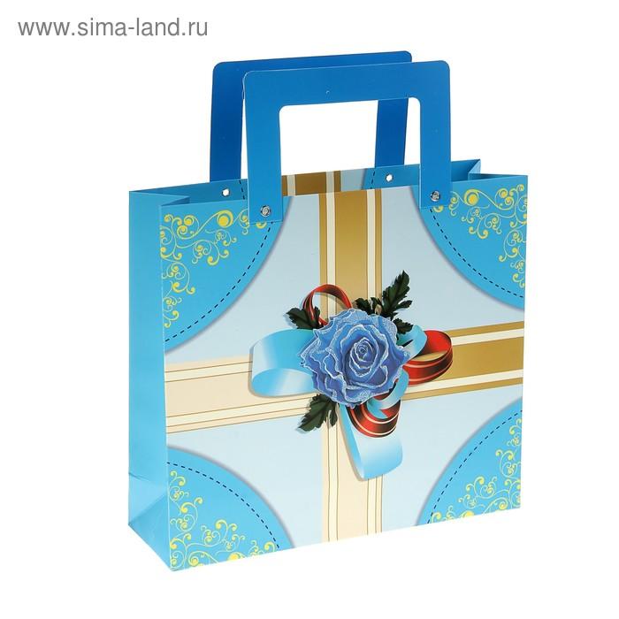 """Пакет ламинированный """"Подарок"""""""
