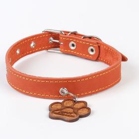 Ошейник кожаный однослойный, 36 - 52,5 см, 58 х 2.5 см, апельсин
