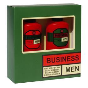 Подарочный набор мужской N 301: шампунь, 250 мл и гель для душа, 250 мл