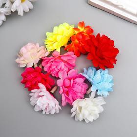 """Цветы для декорирования """"Пион"""" набор 10 шт МИКС 3,5х3,5 см"""
