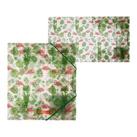 Папка для тетрадей на резинке A5+, 550 мкм, ErichKrause Tropical Flamingo, до 300 листов, с рисунком