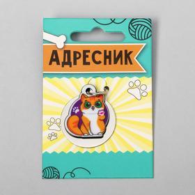 Адресник под гравировку + подвес акрил «Рыжий кот», 3х3 см