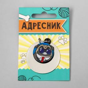 Адресник под гравировку + подвес акрил «Мопс», 3х3 см
