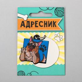 Адресник под гравировку + подвес акрил «Овчарка», 4х4 см