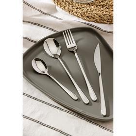 Набор столовых приборов, Magistro «Дина», 4 предмета, серебряный