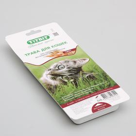 Трава Titbit для кошек овес