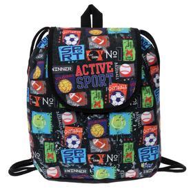 Мешок-рюкзак для обуви, с клапаном, 29 х 22 х 13.5 мм, «Оникс», СР-04, «Мячи mix»