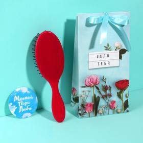 Подарочный набор «Для тебя», 2 предмета: зеркало, массажная расчёска, цвет МИКС