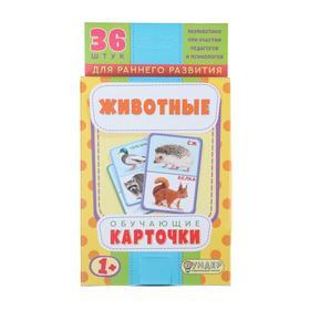 """Карточки обучающие """"Животные"""" 36 шт., 12,5 х 8,7 см"""