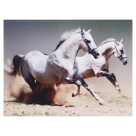 Картина 'Два белых коня' 30х40 см Ош