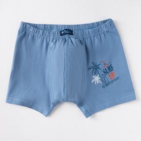 Трусы-боксеры для мальчика, цвет светло-синий, рост 98-104 см (3/4)