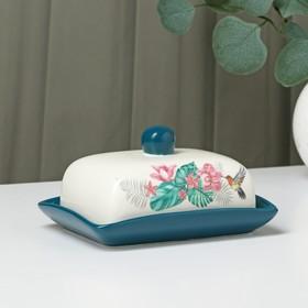 Маслёнка Доляна «Тропики», 16,5×12,5×10 см