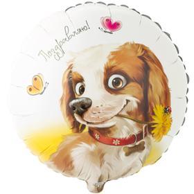 """Шар фольгированный 18"""" «Поздравляю. Собака с цветком», круг"""