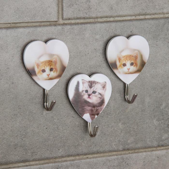 Набор крючков на липучке «Котята», 3 шт, рисунок и форма МИКС - фото 7653009