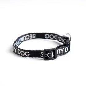 Ошейник с фастексом Security dog, 30 х 1 см