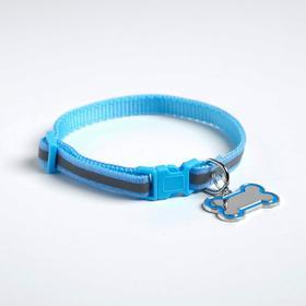 Ошейник светоотражающий с адресником, 30 х 1 см, капрон, цвет синий