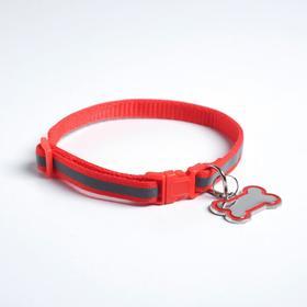 Ошейник светоотражающий с адресником, 30 х 1 см, капрон, цвет красный