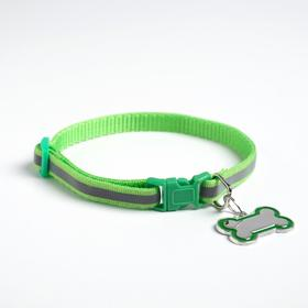Ошейник светоотражающий с адресником, 30 х 1 см, капрон, цвет зелёный