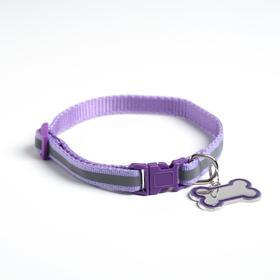 Ошейник светоотражающий с адресником, 30 х 1 см, капрон, цвет фиолетовый