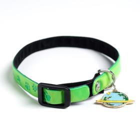 Ошейник светоотражающий «Лапки» с подвесом, 30 х 1 см, цвет зелёный