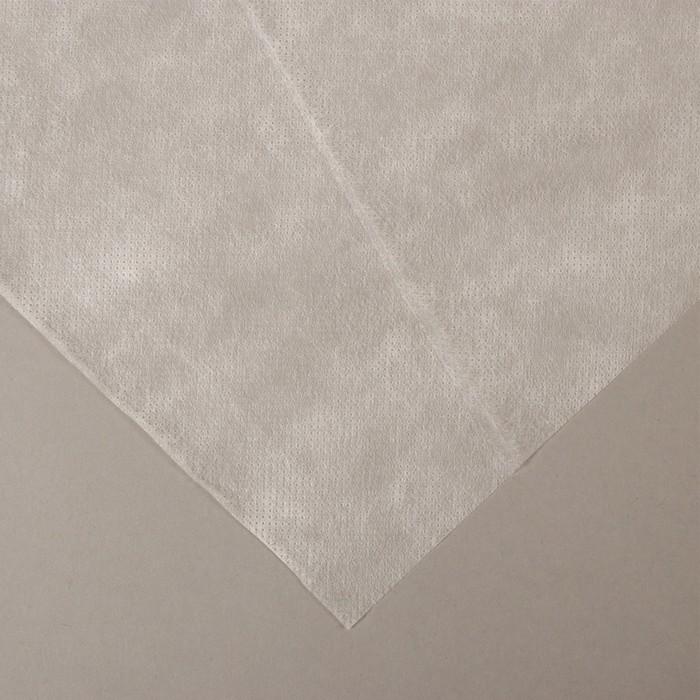 Материал укрывной, 10 × 1,6 м, плотность 30, с УФ-стабилизатором, белый, «Агротекс»