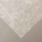 Материал укрывной, 10 х 1.6 м, плотность 42 г/м², УФ, белый