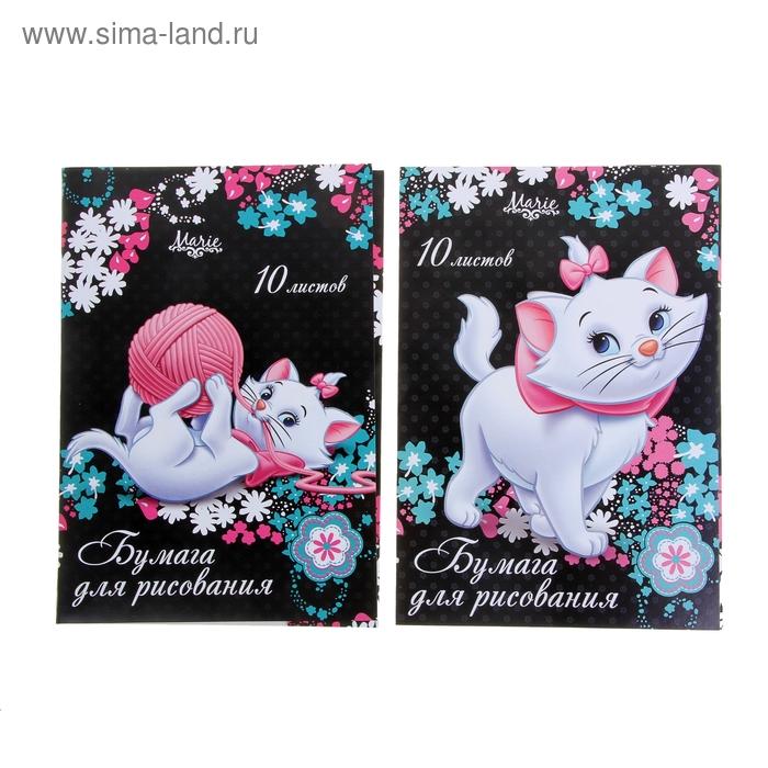Папка для рисования А4, 10 листов, Marie Cat, МИКС