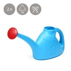 Watering can, 2 liters, with a diffuser, MIX color, Assorted