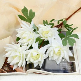 """Artificial flowers """"Aster terry"""" 10x65 cm, white"""