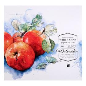"""Альбом для акварели """"Малевичъ"""", White Swan, 230 x 240 мм., 200 г/м², 20 листов, на склейке"""