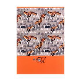Скетчбук А5 32л на скрепке Лисички, обл мел карт,бел бл 100г/м2 9153 Ош