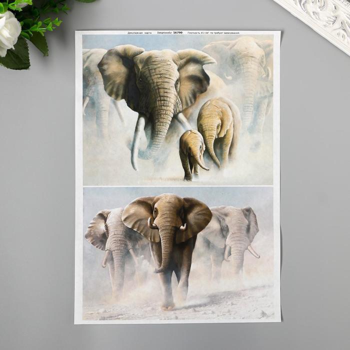 """Декупажная карта """"Слоны с бивнями"""" плотность 45г/м2, формат А4 *"""